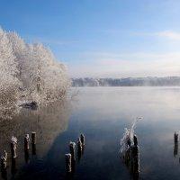 Озеро :: Татьяна Нижаде