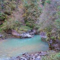Гуамское ущелье — ущелье в верховьях реки Курджипс. :: Elena Izotova