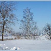 Зимушка-зима :: nika555nika Ирина