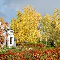 Золотая осень правит бал :: nika555nika Ирина