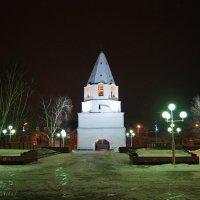 Сызранский кремль :: nika555nika Ирина