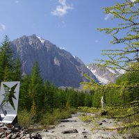 Памятники погибшим в альплагере :: Наталия Григорьева