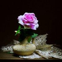 ..казалось, что во тьме ночной СИЯЕТ праздничная роза... :: Валентина Колова
