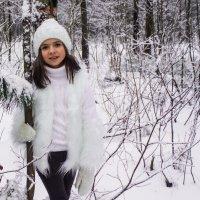 прогулка по зимнему лесу :: Елена Маковоз