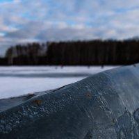 Зима. :: Алексей Сараев