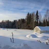 В зимнем сне :: Валентин Котляров