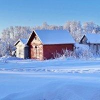Мороз и солнце :: Валерий Талашов