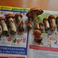 Ах лето! :: Юрий Соколов