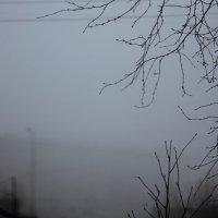 туман :: Cветёлка ***
