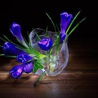 Крокусы в ледяной вазе :: Olena