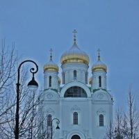 У собора зимой... :: Tatiana Markova