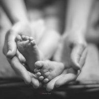 Все в твоих руках :: Екатерина Куница