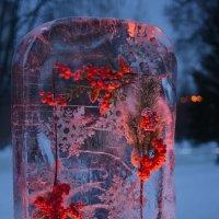 Зимняя фантазия :: grovs