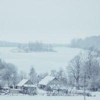Зима :: СВЕТЛАНА ЛЕБЕДЬ