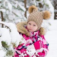 Зима в лесу :: Инта