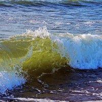 Балтийское море. :: Дмитрий Иншин