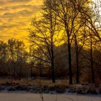 Закат на городском озере :: Игорь Вишняков