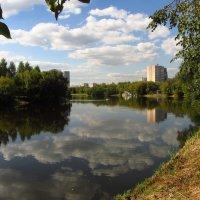 IMG_5180 - Еще один летний день :: Андрей Лукьянов