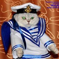 костюм морячки :: Александр Смирнов