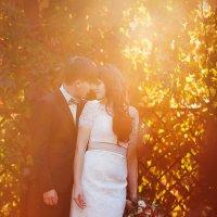 Карина и Илья свадьба :: Светлана Мазурина