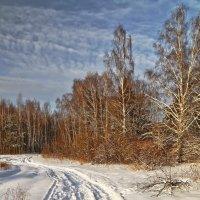 Зима, однако... :: Alexandr Zykov