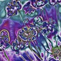 Еще цветы :: Experimenter