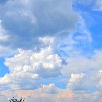 Весеннее небо :: Наталия Лыкова