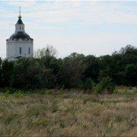 Старочеркасск,пейзаж с церковью... :: Тамара (st.tamara)