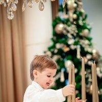 Новогодний переполох :: Solomko Karina