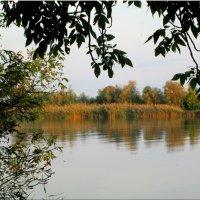 Осенний берег у реки... :: Тамара (st.tamara)