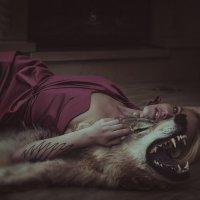 взгляд волчицы :: Светлана Светлакова