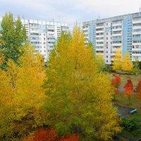 Красавица-осень :: nika555nika Ирина