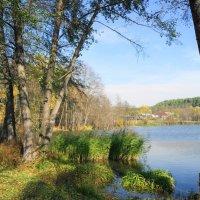 У озера :: nika555nika Ирина