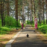 Девочка и голуби :: nika555nika Ирина
