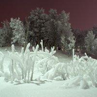 Ледяное царство :: Иваннович *