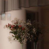 Решение с отражением в ночном окне :: Елена Ахромеева