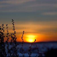 закат :: Владимир Синицын