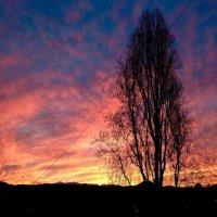 Красочный рассвет отличного дня :: Difoxy *