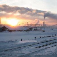 На фоне солнца :: Sergey Apinis