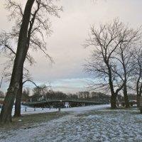 пейзаж с перламутровым небом :: Елена
