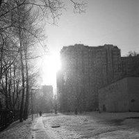 Двор, в котором я живу :: Андрей Лукьянов