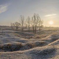 В лучах студеного, декабрьского рассвета, родился день :: Лидия Цапко