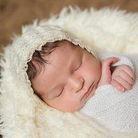 Фотография новорожденных в Краснодаре :: Евгения Гапонова