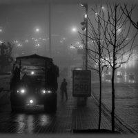 Служба есть, а зимы - нет! :: Валентина Данилова