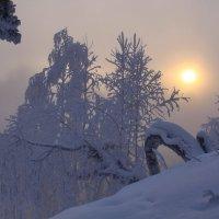 Утро туманное... :: Галина