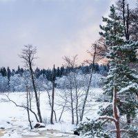 Короткий зимний день. :: Эльвира Лопатина
