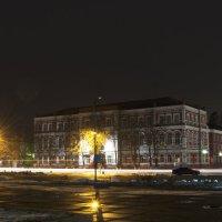 Ночная жизнь :: Ксения Довгопол