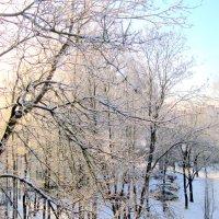 Зима :: An-na Salnikova