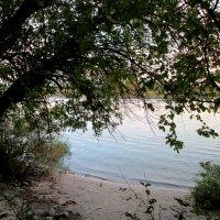 Тишина осеннего вечера... :: Тамара (st.tamara)