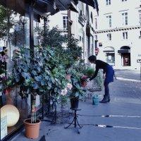 Французская цветочница :: Светлана Лысенко